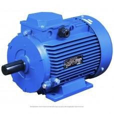 Электродвигатель АДМ112М4 У2 220/380 IM1081 (5,5*1500) лапы