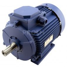 Электродвигатель АИР100L4/2-У2-380-50IM1081-Р.К.В.К31Е-ААА (4/4,75*1500/3000) лапы